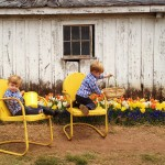 Holland in Haymarket – Burnside Farms Festival of Tulips