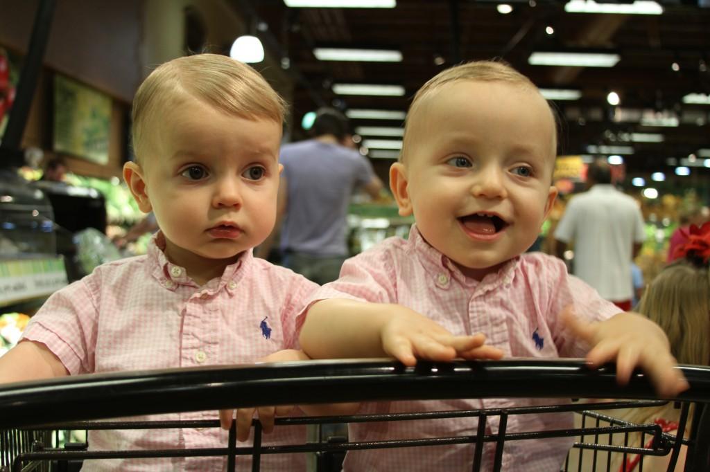 fraternal twins matching pink gingham shirt shopping cart Wegmans