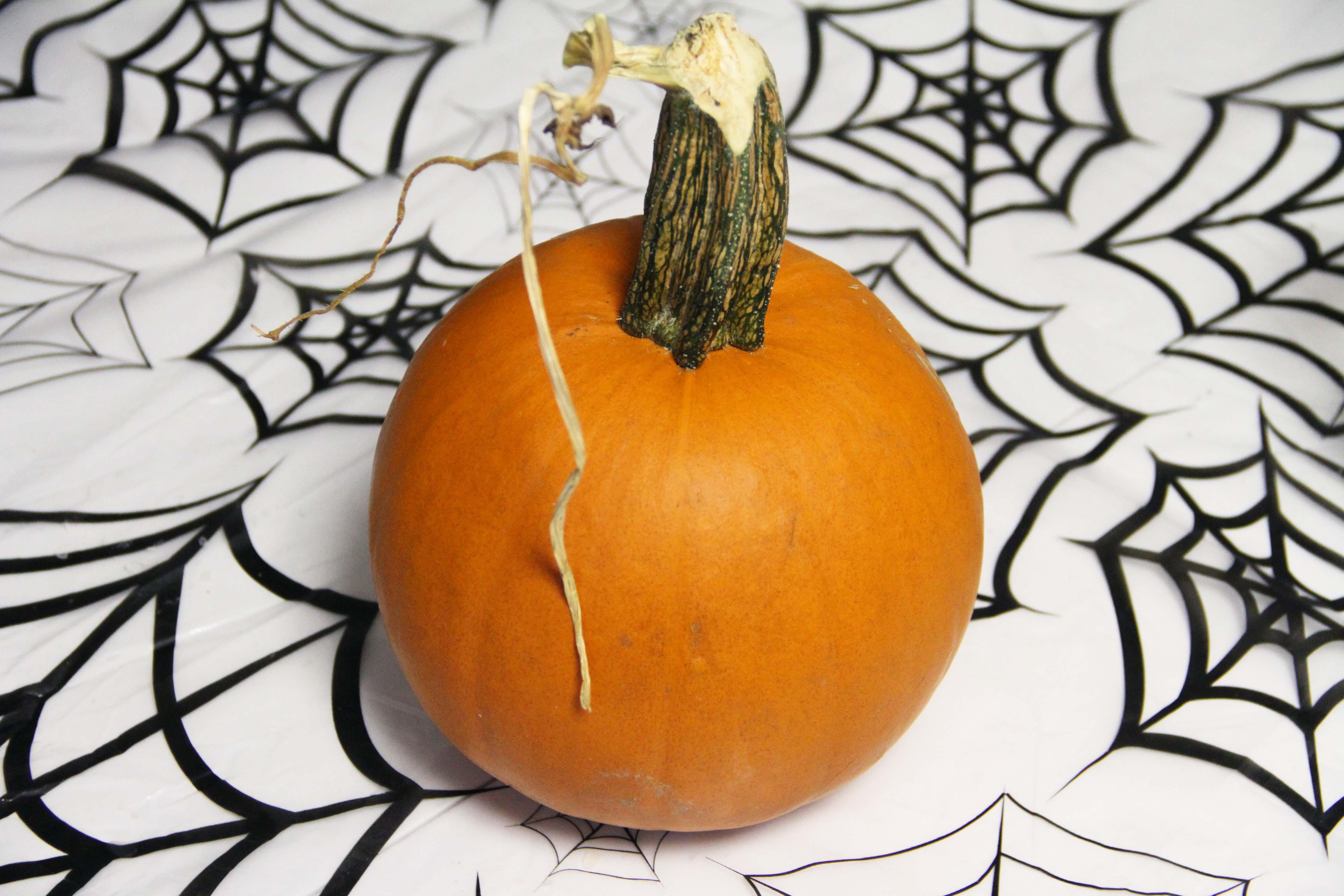 dinner pumpkin 1