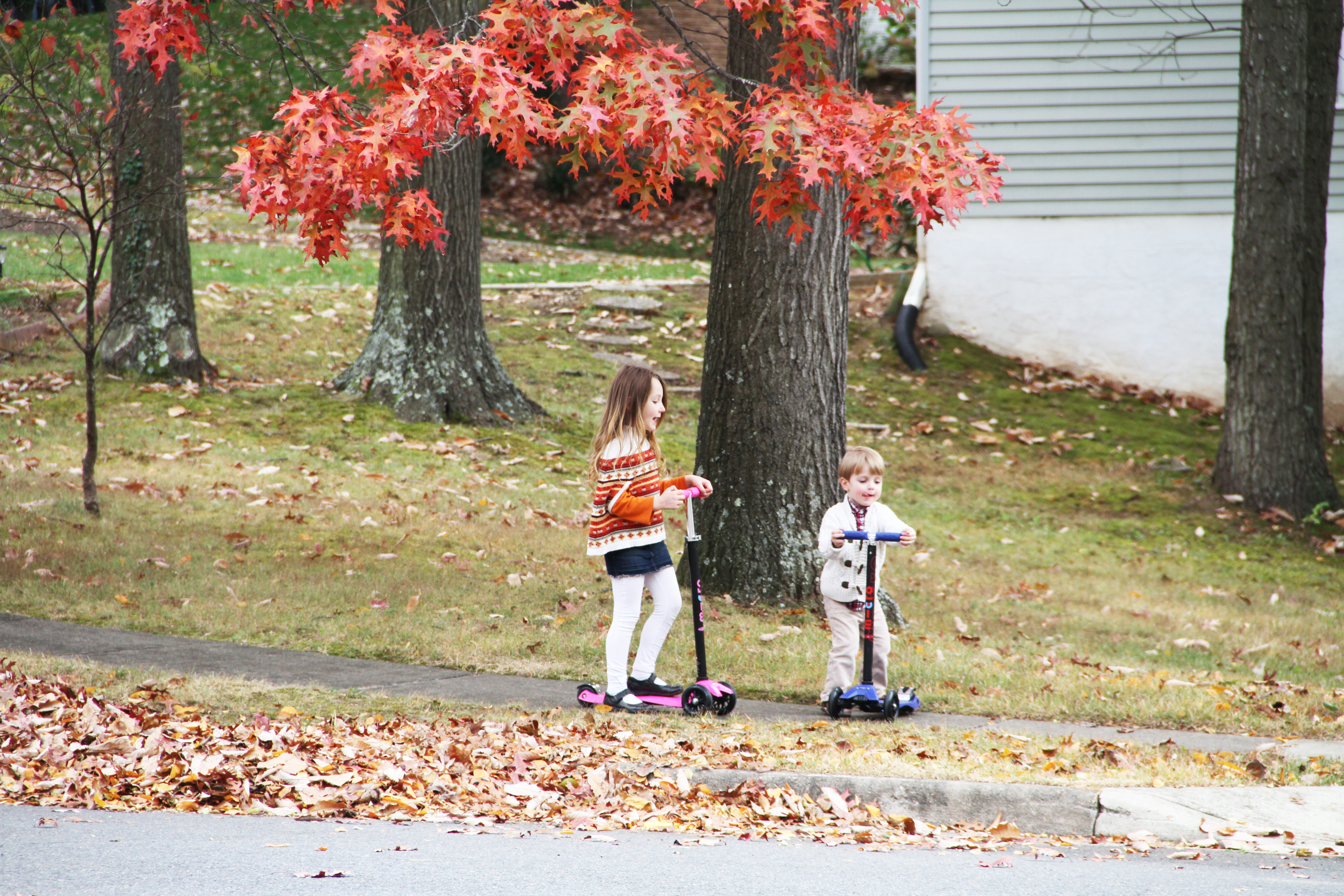 fall scootering 9