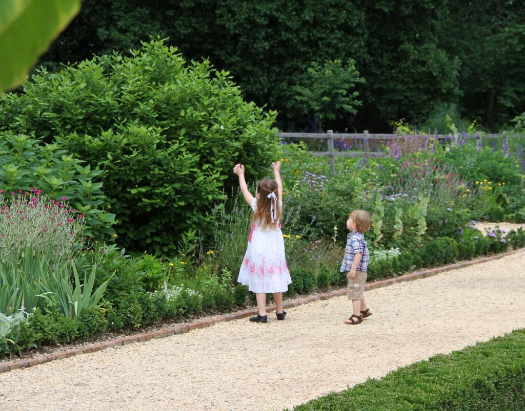 mount vernon garden 4