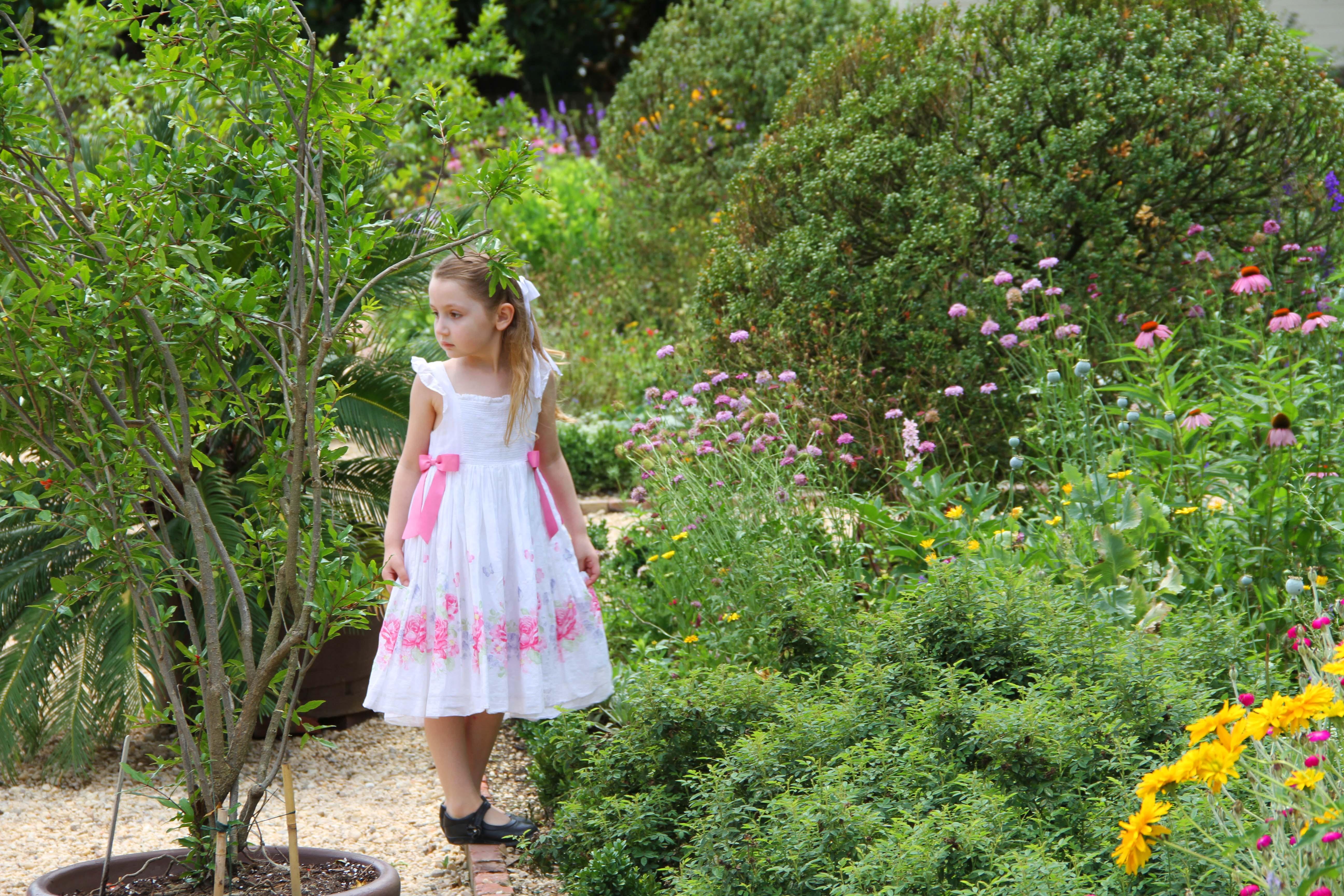 mount vernon garden 5