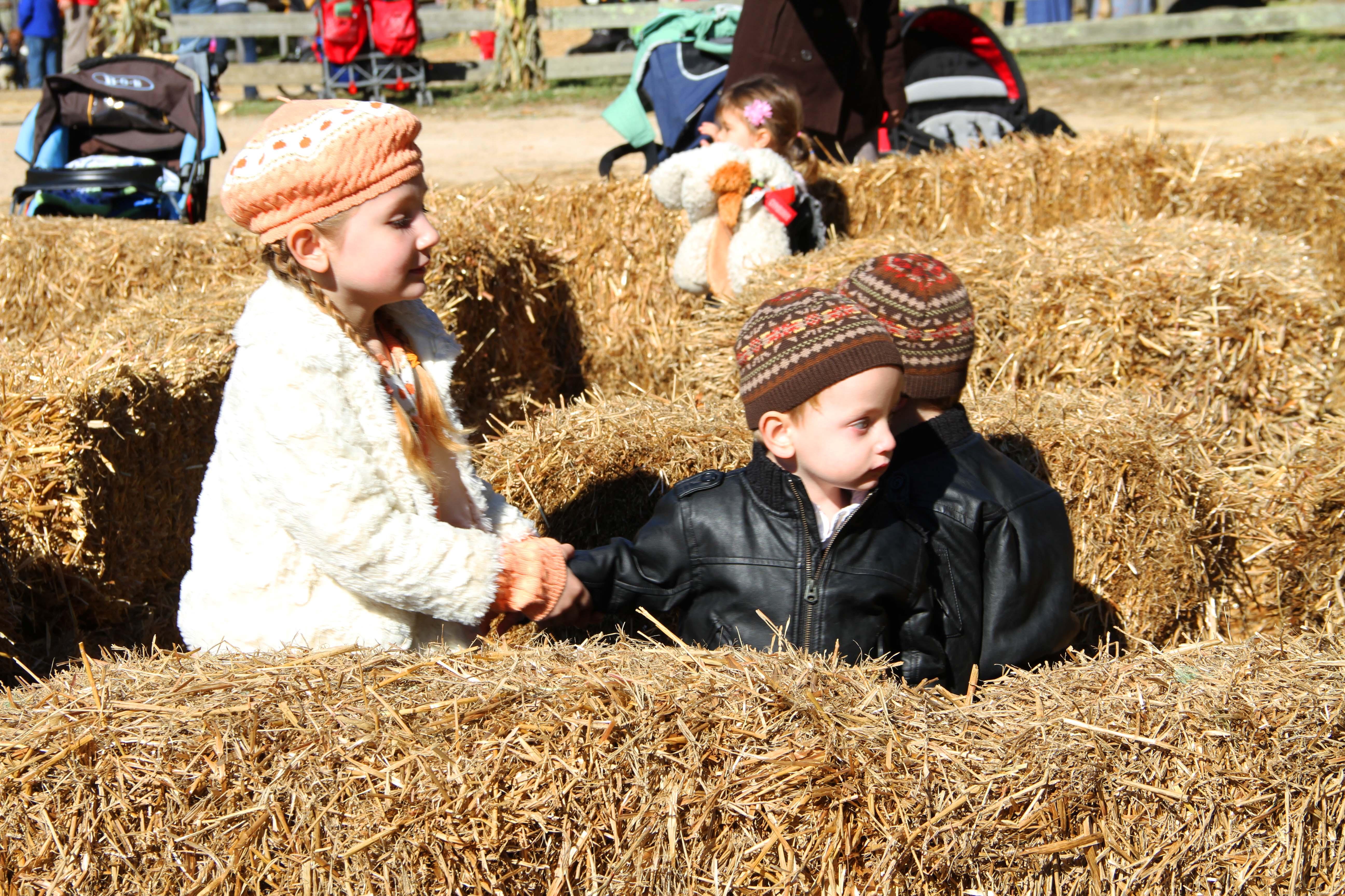 mt vernon fall harvest festival 2013 21