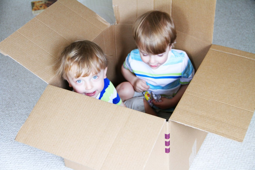 twins playingi n packing boxes